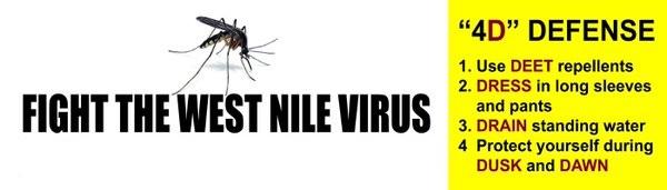mosquito-4ds