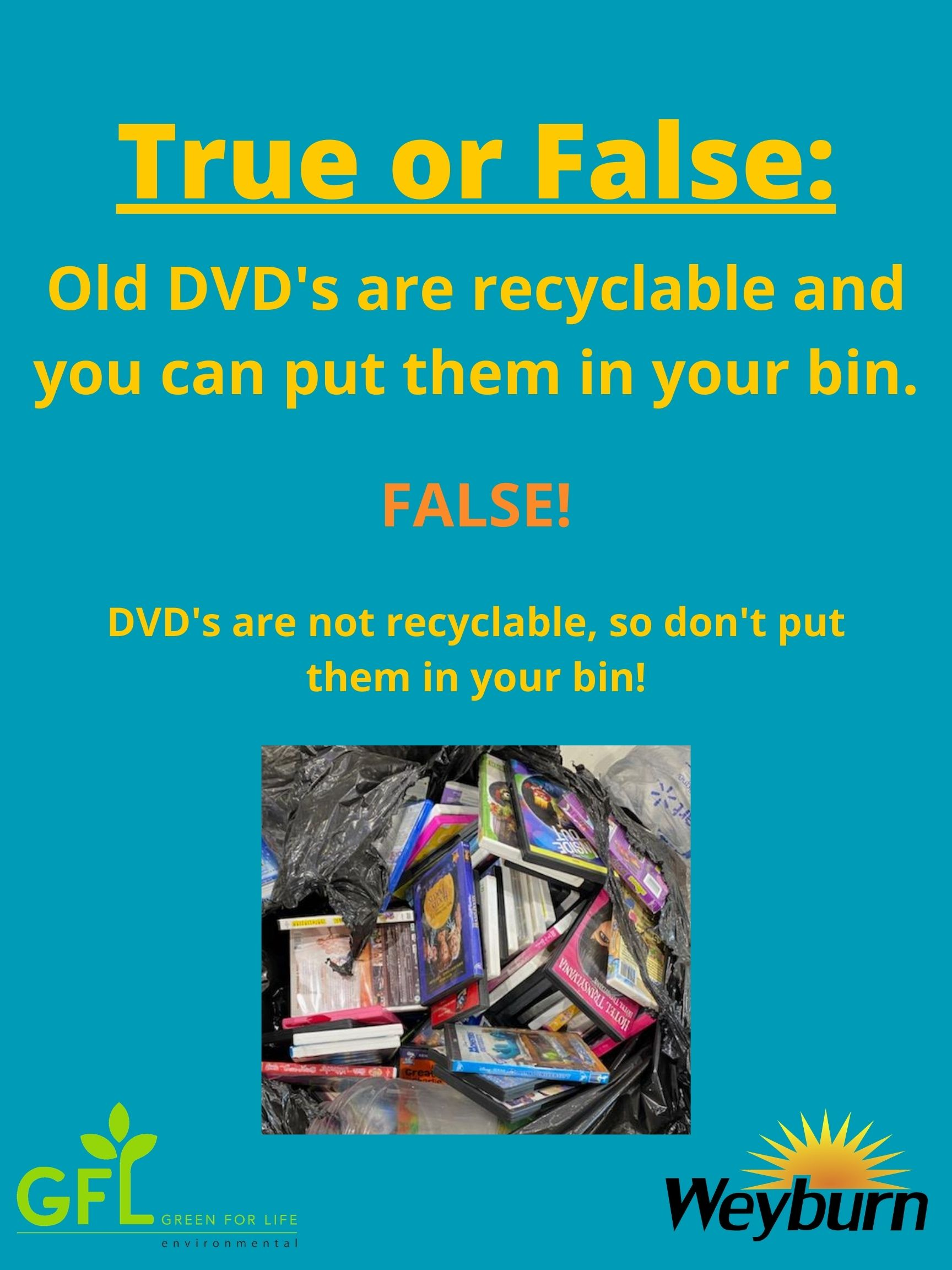True-or-False_DVDs-GFL