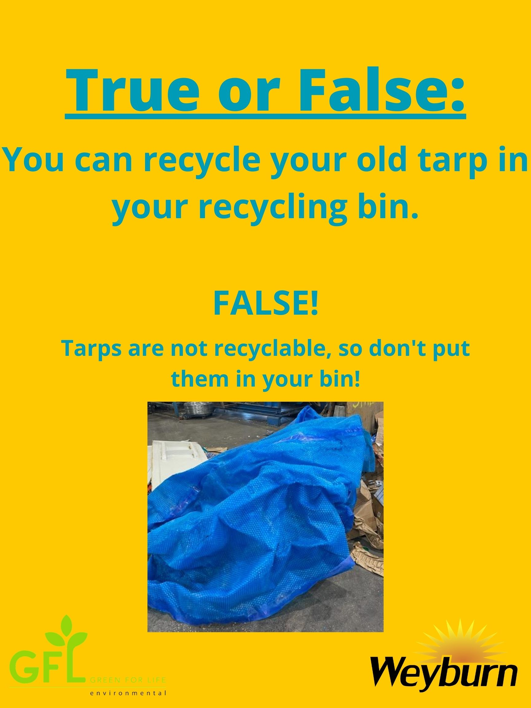 True-or-False_Tarp-GFL